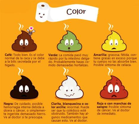 Colores-de-las-heces-